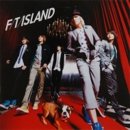 2010 FT ISLAND/FLOWER ROCK
